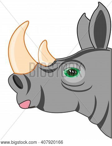 Portrait Animal Rhinoceros On White Background Is Insulated