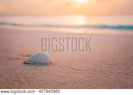 Sea Shell On The Beach At Sunset. Idyllic Nature View On Beach Over Seascape Background. Soft Sand,