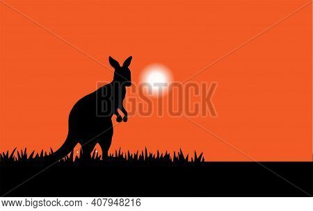 Kangaroo Vector Illustration Isolated On Background  Wilderness, Wildlife, Yellow