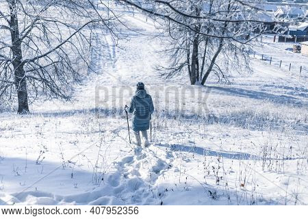Senior Woman Walking In The Winter Forest Using Nordic Walking Sticks. Active Lifestyle, Adventure C