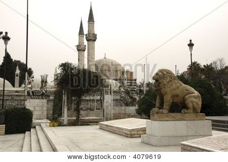 Lion In Front Of The Mosque