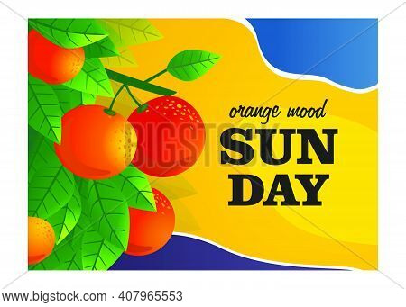 Orange Mood Cover Design. Orange Tree Branches With Fruits Vector Illustrations With Text. Food And