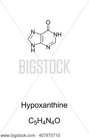 Hypoxanthine, Chemical Formula And Skeletal Structure. Naturally Occurring Purine Derivative And Con