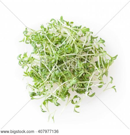 Heap Of Micro Greens Garden Cress Sprouts Isolated On White Background