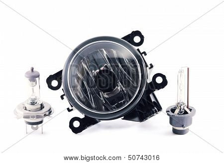 Fog Light. Xenon And Halogen Lamps.