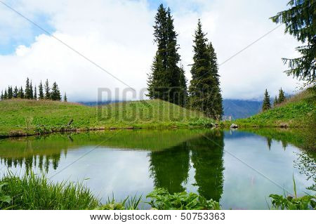 Reflexion of graceful firtrees in water. Kel-Kogor mountain lake.