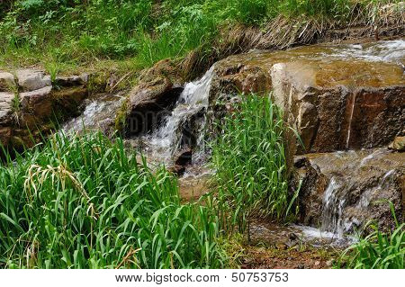 The mountain stream, falling water and green grass