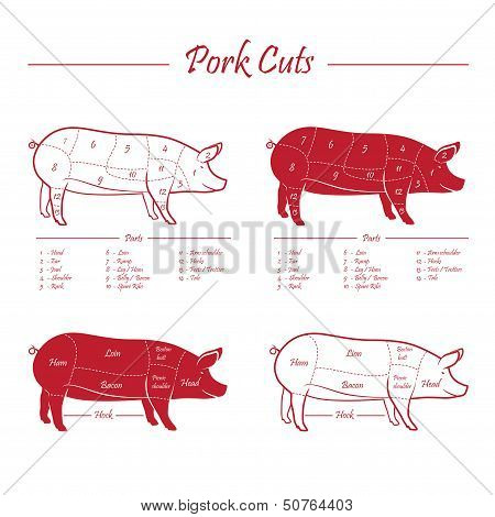 Pork meat cuts scheme, red on white poster