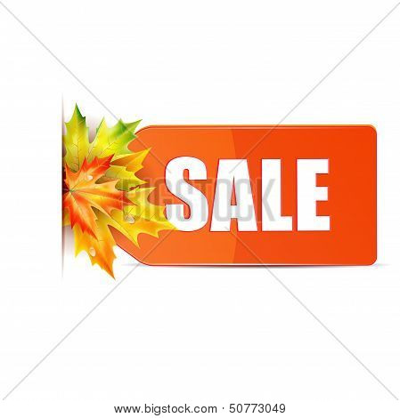 autumn seasonal sale.red price tag with the word sale decorated with autumn maple leaves.red label with maple leaves isolated on white background.vector poster