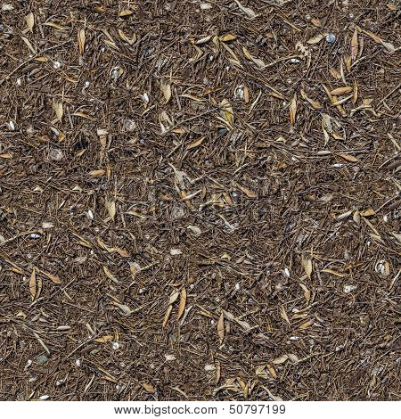 Seamless Texture of the Ground with Dry Herbs.