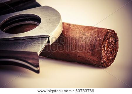 Expensive cigar and cutter on a white background poster