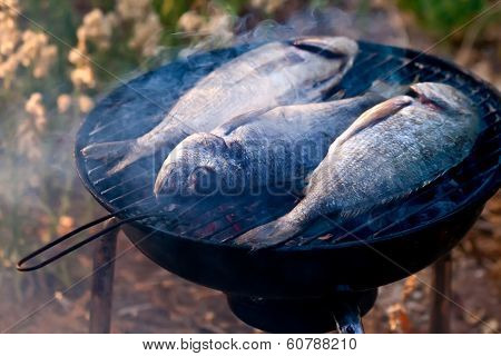 Sea Bream Fish Grilling