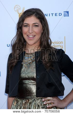 LOS ANGELES - AUG 23:  Mayim Bialik at the Television Academy's Perfomers Nominee Reception at Pacific Design Center on August 23, 2014 in West Hollywood, CA