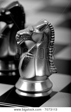 White chess horse on a board