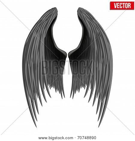Black folded angel wings. Vector.