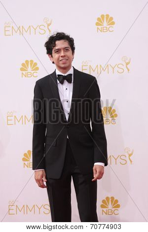 LOS ANGELES - AUG 25:  Geoffrey Arend at the 2014 Primetime Emmy Awards - Arrivals at Nokia Theater at LA Live on August 25, 2014 in Los Angeles, CA