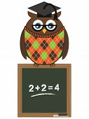 owl teacher perched on blackboard ready to start lessons poster
