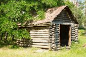 Old abandoned wooden house surrounded in the forest poster