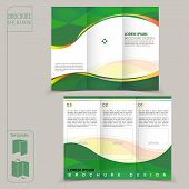 abstract tri-fold green template for business advertising brochure poster