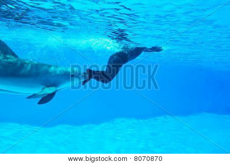 Mondial Record In Freediving-Simone Arrigoni