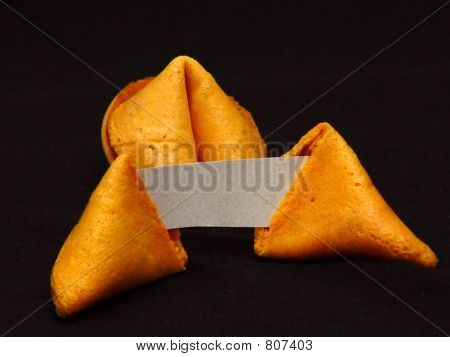 Blank Fortune Cookies