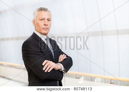 Confident And Successful Male Executive