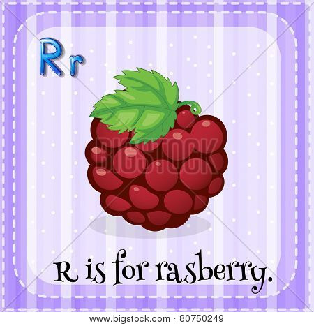 Illustration of a letter r is for rasberry
