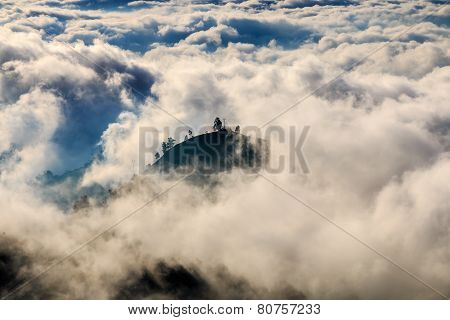 Island Of Trees Above The Clouds