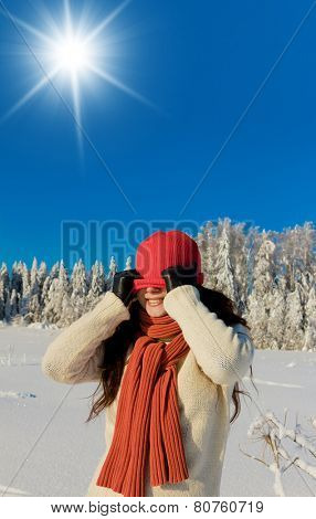 Christmas Season Midwinter Sunshine