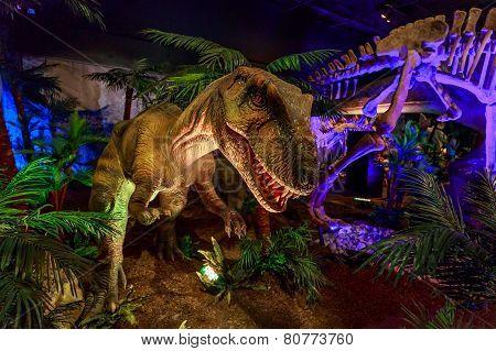 Dinasours Unearthed - Yangchuanosaurus