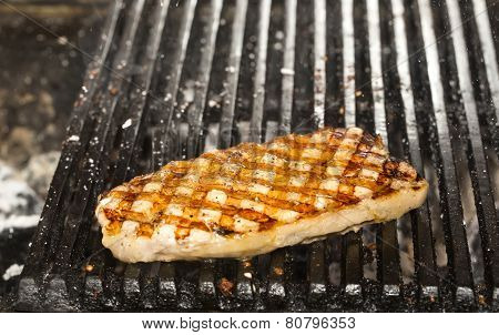 catfish meat on the grill