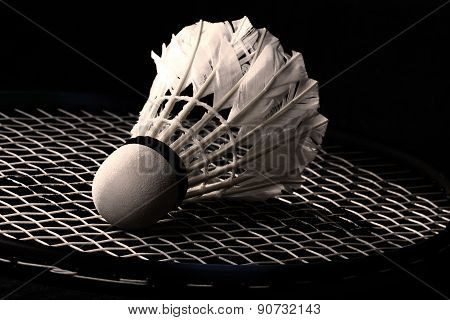 shuttlecock from goose feathers on badminton racket