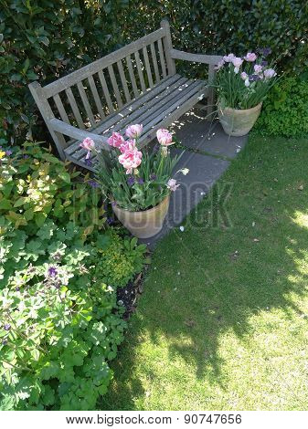 Garden Bench And Flowers