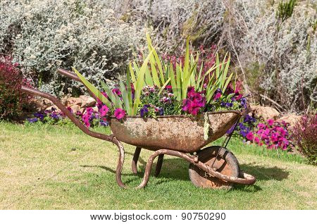 New Use For An Old Wheelbarrow