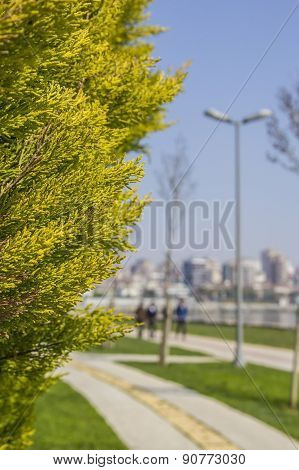 background blur in a park on the waterfront in the area of Kadikoy, Istanbul poster