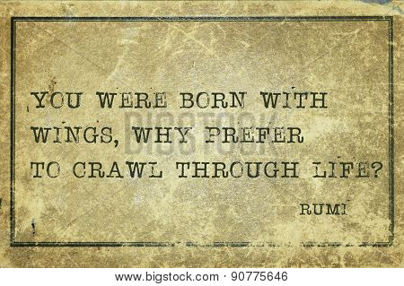 Why Crawl Rumi