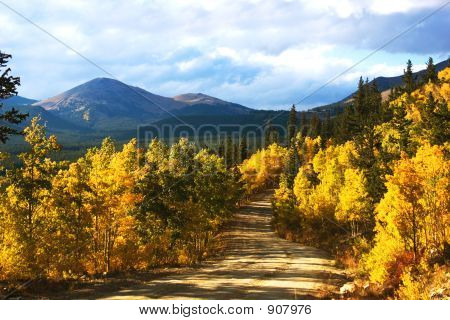 Fall Foliage, Boreas Pass