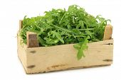 fresh rucola leaves (Eruca sativa) in a wooden box on a white background poster