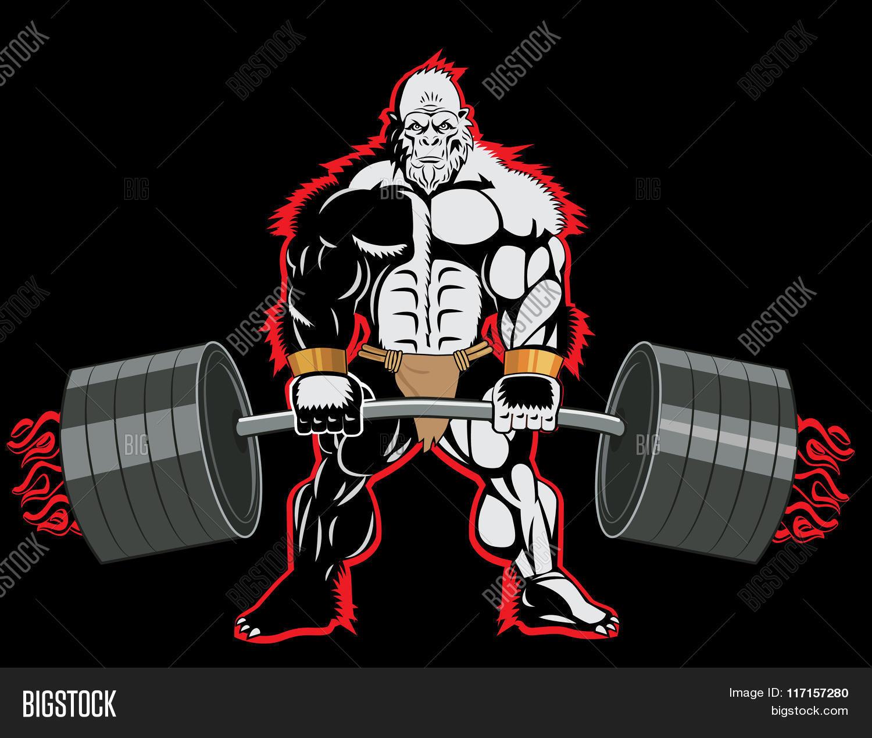 Bodybuilder Ape Mascot Character Vector  for Bodybuilding Poster Design  173lyp
