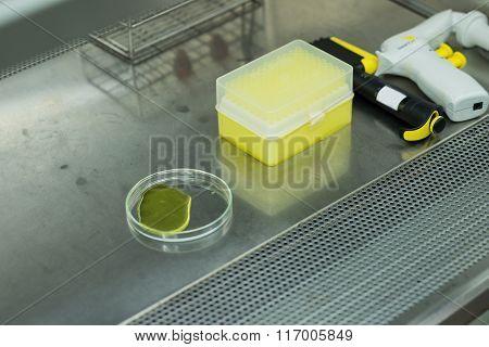 Equipment in biosafety cabinet