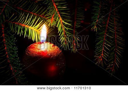 Candle And Fir Branches