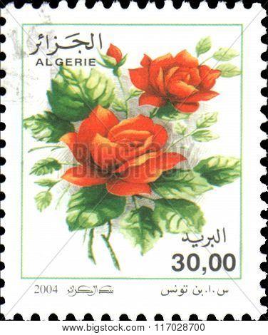 ALGERIA - CIRCA 2004: stamp printed by Algeria, shows Red roses , circa 2004