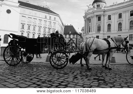 Vienna Street Attraction, Horse Ride
