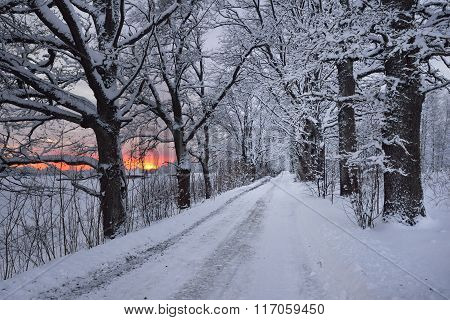 Bright Pink Sunset On A Rural Snowcovered Road Surrounded By Trees