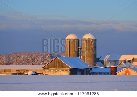 Barn And Grain Elevators On A Sunny Winter Day Standing On A Snowcovered Field