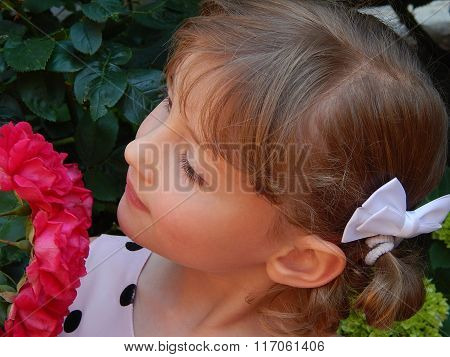 A girl looks at a rose bush
