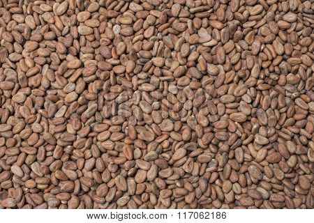 Raw Cacao Background
