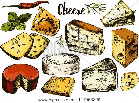 hand drawing set with different cheeses.