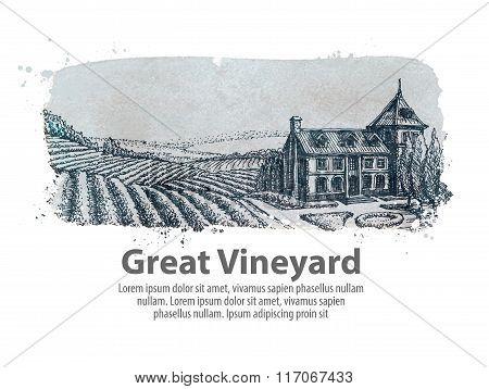 vineyard or a farm of hand-drawn sketch. vector illustration