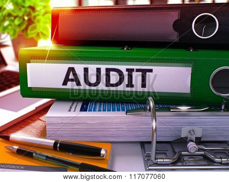 Green Office Folder with Inscription Audit
